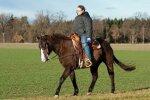 dziecko na koniu